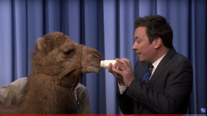 NBC Extends Jimmy Fallon's 'Tonight Show' Contract
